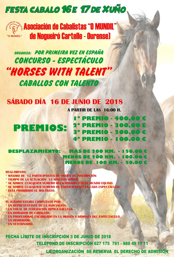 cartel festa do cabalo