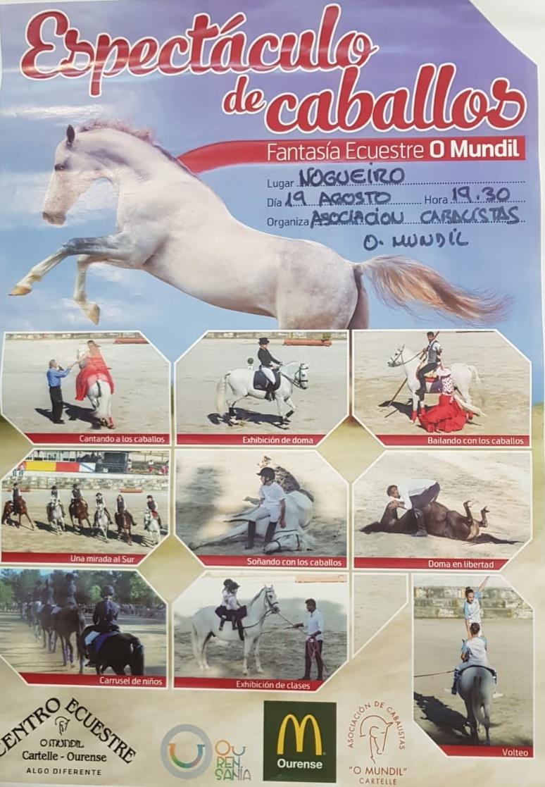 Cartel caballos